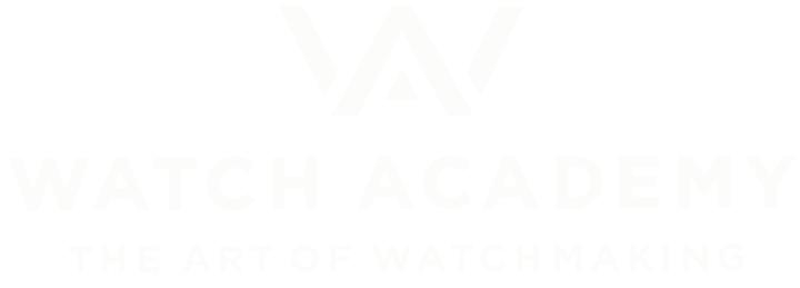 WA – WATCH ACADEMY GmbH